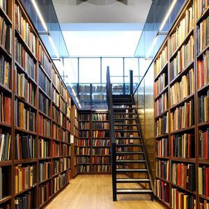 Библиотеки Емвы